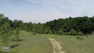Lapeer Residential Lots & Land For Sale: 5405 Gosline Rd