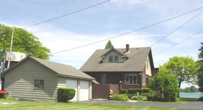 Marine City MI Single Family Home For Sale: $449,000