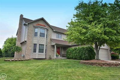 Macomb MI Single Family Home For Sale: $295,900