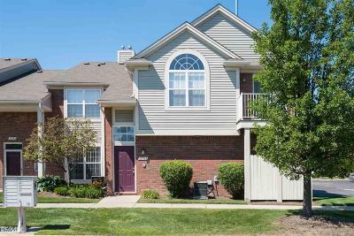 Clinton Township Condo/Townhouse For Sale: 15327 Cornell