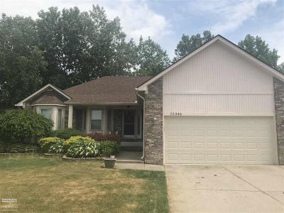 New Baltimore MI Single Family Home Back On Market: $250,000