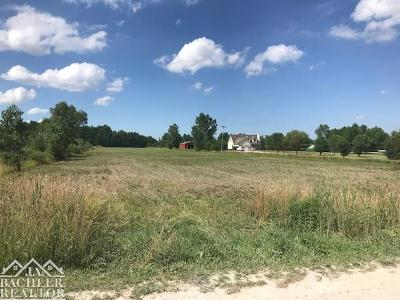 Residential Lots & Land For Sale: Vacant Plank