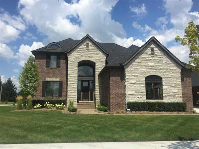 Shelby Twp Single Family Home For Sale: 8805 Softtail Lane