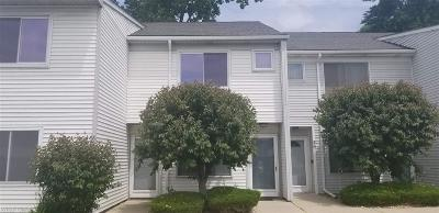 Mount Clemens Condo/Townhouse For Sale: 58 Rosebud