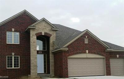 Auburn Hills Single Family Home For Sale: 3131 Ramzi Lane