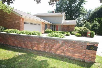 Grosse Pointe Shores Single Family Home For Sale: 65 Woodland Shores