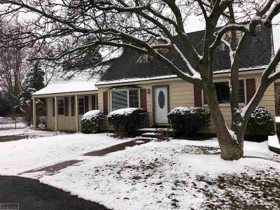 Washington MI Single Family Home For Sale: $239,500