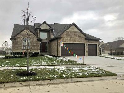 Macomb Single Family Home For Sale: 55155 Hidden River