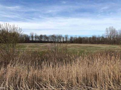 Casco MI Residential Lots & Land For Sale: $29,000