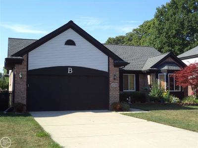 Westland Single Family Home For Sale: 38363 Shelby