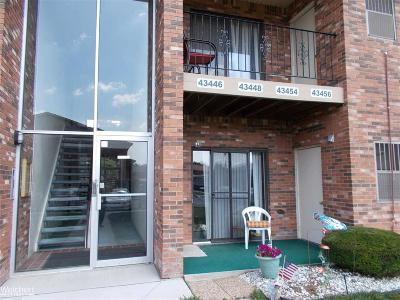 Sterling Heights Condo/Townhouse For Sale: 43446 Fountain