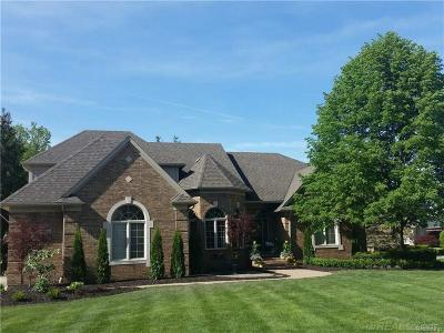 Shelby Twp Single Family Home For Sale: 2418 Stanton
