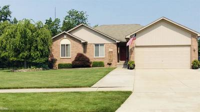 Chesterfield Twp MI Single Family Home For Sale: $244,000