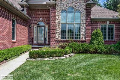 Port Huron Single Family Home For Sale: 3142 Blackheath