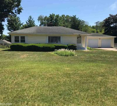 Fort Gratiot Single Family Home For Sale: 3423 North River Road