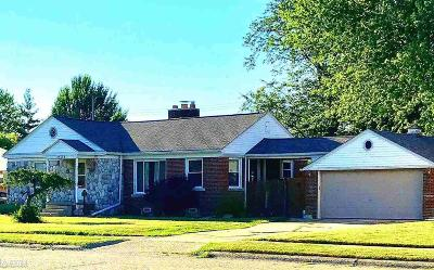 Saint Clair Shores Single Family Home For Sale: 23005 Lincoln St