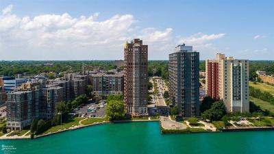 Detroit Condo/Townhouse For Sale: 8162 E Jefferson Ave