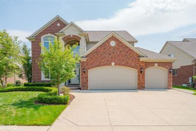 Macomb Twp Single Family Home For Sale: 16026 Moore Park Rd.