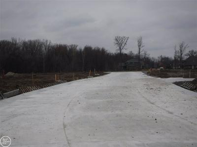 Macomb Twp Residential Lots & Land For Sale: 45623 Shoal Drive