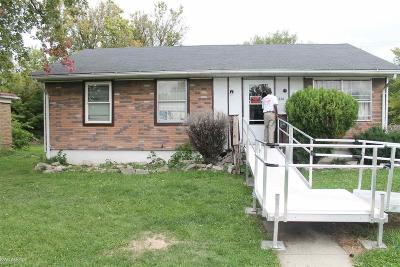 Mount Clemens Single Family Home For Sale: 256 N Walnut