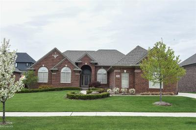 Shelby Twp Single Family Home For Sale: 55803 Lochmoor Dr