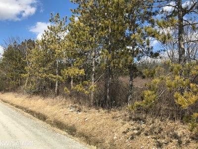 Residential Lots & Land For Sale: Mc Kinley Road
