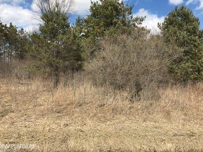 Residential Lots & Land For Sale: Lindsey Road