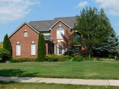 Rochester Single Family Home For Sale: 1234 Letica Rd.
