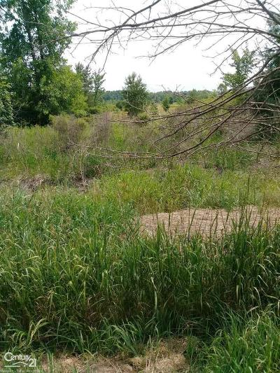 Residential Lots & Land For Sale: Imlay City Road