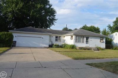Clinton Township Single Family Home For Sale: 20220 Williamson