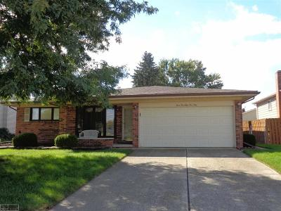 Macomb Single Family Home For Sale: 35959 Foothill