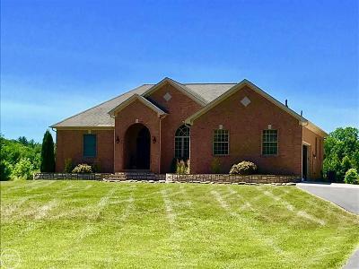 Saint Clair Single Family Home For Sale: 486 S Bartlett