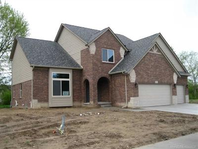 Macomb Twp Single Family Home For Sale: 20620 Misty Brook Ct.