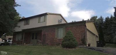 Rochester Hills Single Family Home For Sale: 2336 Arizona