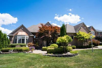 Shelby Twp Single Family Home For Sale: 54834 Catalpa Drive