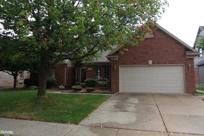 Macomb Twp Single Family Home For Sale: 46712 Covington