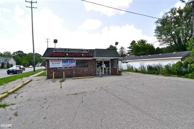 New Baltimore Commercial/Industrial For Sale: 36011 Green