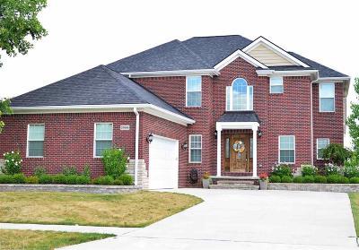 Washington Single Family Home For Sale: 57664 Abraham
