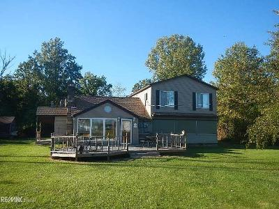 Harsens Island Single Family Home For Sale: 6800 Dickinson Island