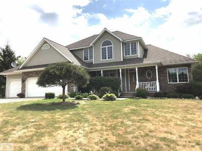 Lapeer Single Family Home For Sale: 5905 River Ridge Lane