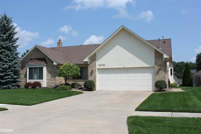 Chesterfield Twp MI Single Family Home For Sale: $299,900