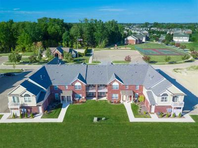 Chesterfield Twp Condo/Townhouse For Sale: 28283 South Pointe Lane