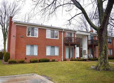 Clinton Township Condo/Townhouse For Sale: 16810 Edloytom Way