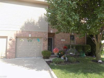 Harrison Twp Condo/Townhouse For Sale: 34710 Bay Vista