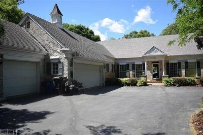 Lake Orion Single Family Home For Sale: 241 Menasha Trail