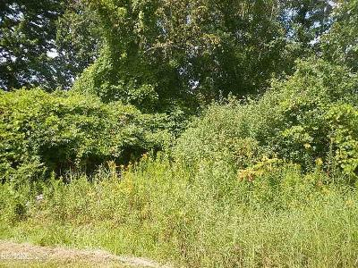 Harsens Island Residential Lots & Land For Sale: North Channel