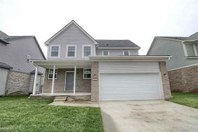 Chesterfield Twp MI Single Family Home For Sale: $269,900