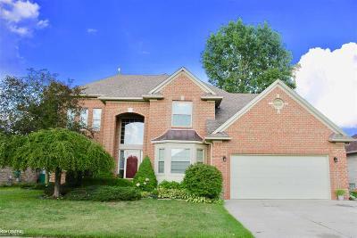 Macomb Twp Single Family Home For Sale: 47230 Stony Brook