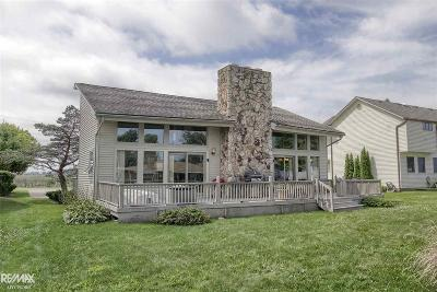 St. Clair Single Family Home For Sale: 7774 Anchor Bay