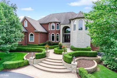 Macomb Single Family Home For Sale: 67750 Rachael